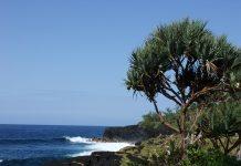 Comment bien investir à la Réunion?